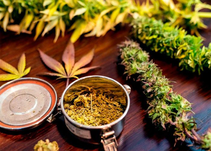 Все, что вы хотели узнать о медицинской марихуане